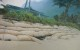 Sandbag revetment at Ha`ena.