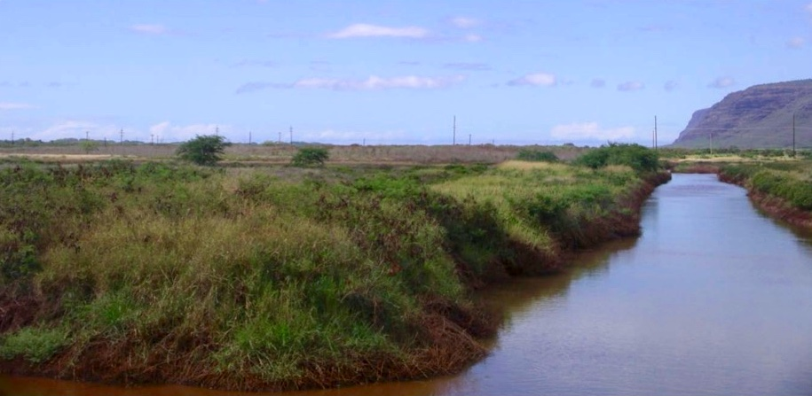The main drainage canal at the Kawaiele pump station, one of many sites the Water Commission plans to visit in October.