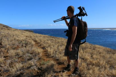 Rats Nearly Gone from Lehua Island